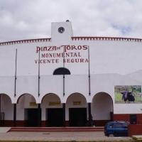 Rechazan prohibir acceso a menores de edad a plazas de toros en Hidalgo.