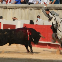 1ª de Feria de la Vendimia en Nimes: Lea Vicens abre con triunfo.