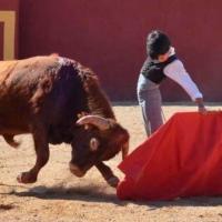 El manifiesto de Marco Pérez: palabra de niño, argumento de torero