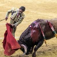 Suspendida la corrida de toros en la que Diego Urdiales regresaba a los ruedos.