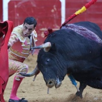 La plaza de toros de Valencia no devuelve el importe del pase anual a mil abonados.