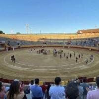 España: La pandemia redujo las cifras de la temporada taurina en un 89 por ciento.