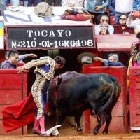 Escrito taurino sin la palabra toro o toreros Por Bardo de la Taurina.