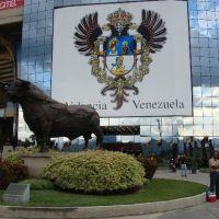 ¿La fiesta en paz? De Caracas y Quito a Washington, pasando por Puebla Por Leonardo Paéz.
