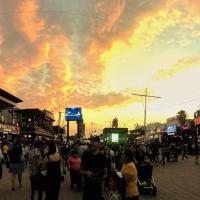 Feria Nacional de San Marcos 2021 se pospone por pandemia de covid-19.