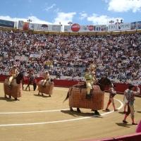 Quito prohibe los espectáculos taurinos.