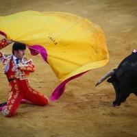 """'El Fandi' advierte del error de haber """"descuidado"""" al espectador de las corridas de toros."""
