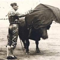 ¿Por qué hablar de toros y de cultura?