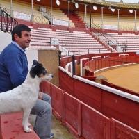 """Carmelo García: """"La tauromaquia necesita que los empresarios empujemos"""""""