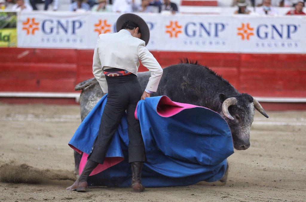 Rodríguez necesita toros pero es un torero diferente, de mucho pellizco y de buen corte. Foto NTR Toros.