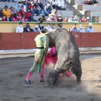 """""""El Rifao"""" quiere vivir del toro, aunque su sueño le cueste la vida."""