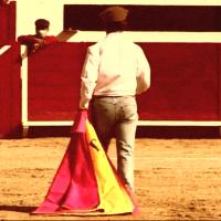 """Nueva Emisión de Tauromedio: """"México busca un torero"""" desde León Guanajuato."""