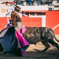 Festival Taurino en León: Cuando el toreo se paladea, Arturo Saldívar triunfador moral del festejo.