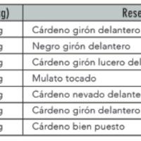 Reseñado el encierro de Xajay para León Gto.