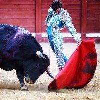 Opinión Taurina: El toro de museo.