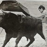 Ocho con Ocho: Eloy y su ejemplo Por Luis Ramón Carazo