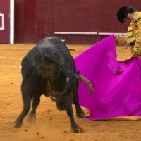 Crónica Vistalegre: El Sabor del Buen Toreo.