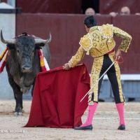 """""""Soy partidario de la variedad de encastes, no tengo una ganadería favorita"""": Emilio de Justo."""