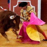 Obispo y Oro: ¿Y los toros de Vistalegre? Por Fernando Fernández Román.