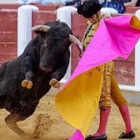 Valladolid: Es Morante quien marca las horas.