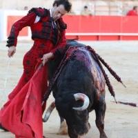 Finito de Córdoba y el suceso de Nimes.