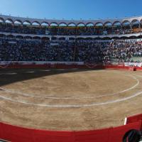 Cancela Gobierno de  Jalisco las fiestas de octubre: ¿Y los Toros?