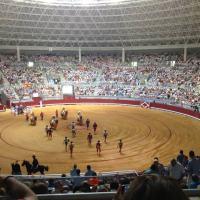 Burgos: Manzanares y los toros de Miura, platos fuertes de la feria.