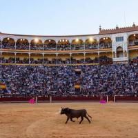 Carteles — Feria de Otoño 2021 en Las Ventas de Madrid.