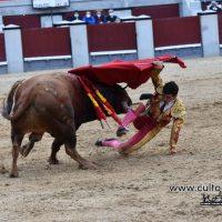 Feria de Otoño: ¿Y la vergüenza torera?