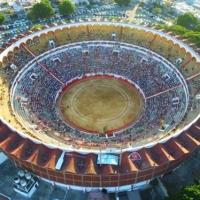 Buscan impulsar debate sobre permanencia de corridas de toros en Guadalajara.