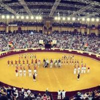 Portugal prohíbe la entrada a las corridas de toros a menores de 16 años.