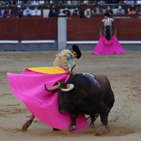 Emociona a Morante el regreso a la Plaza México.